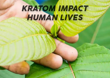 How does Purchasing Kratom impact human lives